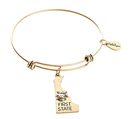 - BellaRyann State Expandable Bangle Charm Bracelet in Vintage Gold (Delaware)