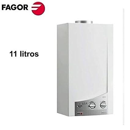 Calentador Fagor FEP-11 gas butano