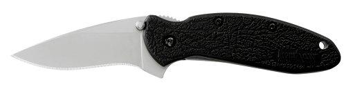Kershaw Ken Onion Scallion Folding Pocket Knife with Speed Safe, Outdoor Stuffs