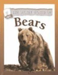 Bears (Secret World of...)