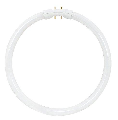 Satco S8162 3500K 55-Watt 2GX13 T5 Circline High Performance Lamp, Neutral White (Bulbs Circline Satco)