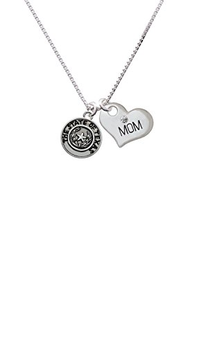 Texas Seal Jewelry Pendant (Texas State Seal - Mom Heart Necklace)