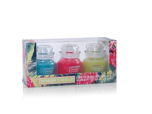 Yankee Candle Oasis Original Small Jar Candle Gift Set with a Poolside Oasis, a Roseberry Sorbet, and a Fresh Lime & Cilantro Small Jar