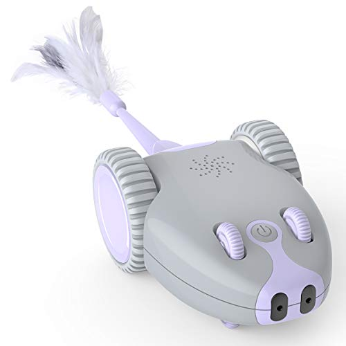 DADYPET Katzenspielzeug, Roboter Maus, Mausspielzeug, automatische Bewegung durch den Raum, über USB aufladbar…