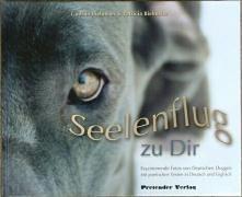 Seelenflug zu Dir/The Soul's Flight to you: Faszinierende Fotos von Deutschen Doggen mit poetischen Texten