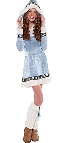 amscan Girls Arctic Princess Costume - Medium (8-10), Multicolor