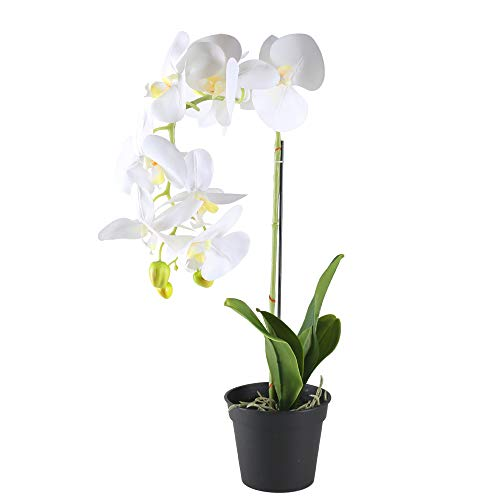GTIDEA 21 inches Artificial Orchid Bonsai Plant Real Touch PU Fake Phaleanopsis Branches with Black Plastic Pot Home Office Bedroom Table Centerpieces Decor White (Large Orchid Artificial)