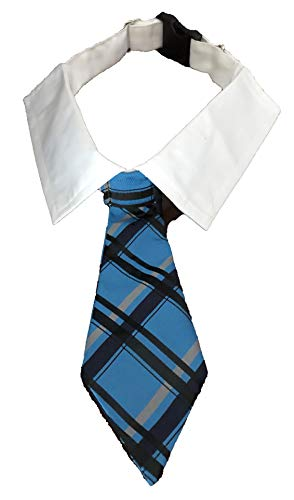 PawsAttire LLC Hanging Necktie Pet Collar - Available in Many Sizes and Patterns. Great for Dogs, Cats and Many Other Pets. (Large; Strap adjusts 46-54 cm; tie 19.65cm Long, Blue Plaid)