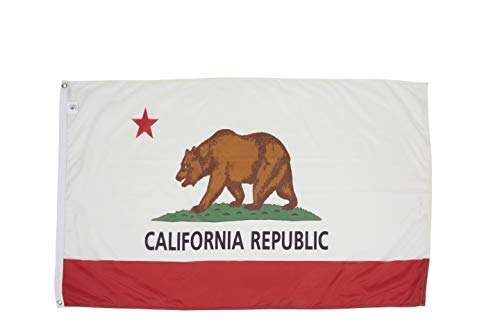 Nylon California State Flag - Allied Flag - 5' x 8' Outdoor Nylon California State Flag - Made In USA - Vivid Color and Fade Resistant - Reinforced Hem and Brass Grommets