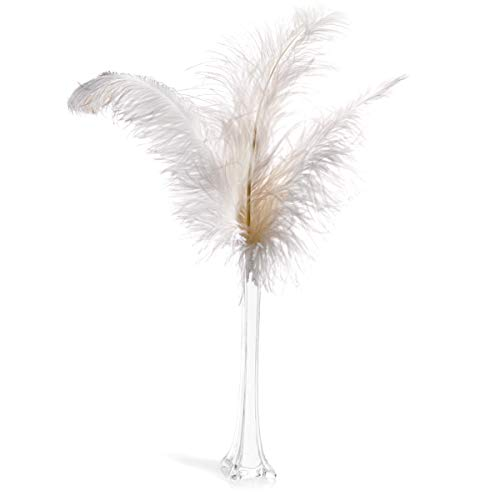 White Ostrich Feathers and Glass Vase Centerpiece Kit -