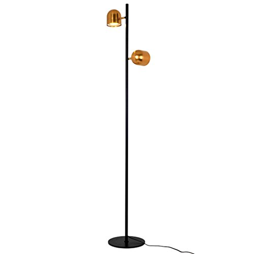 Modern Minimalist Wrought Iron Golden Floor Lamp, Adjustable Angle Single and Double Head Floor Lamp, Living Room Bedroom Study Vertical Table Lamp, H160CM (Size : Dual Lights)