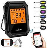 Best Bluetooth Meat Thermometers - Nobebird Meat Thermometer Bluetooth, BBQ Thermometer Smart Cooking Review