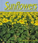 Sunflowers, Gail Saunders-Smith, 1560654899