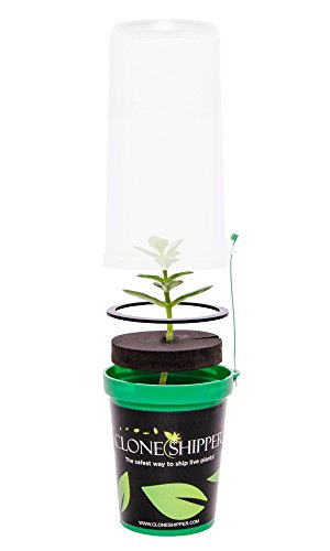 311Q5LFXCQL Clone Shipper Classic Young Live Plant Seedling Clones Shipping Packaging LED Light Dome Cover