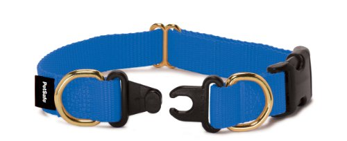 Petsafe KeepSafe Break-Away Collar, Prevent Collar Accidents for your Dog or Puppy, Improve Safety, Compatible with Leash Use, Adjustable Sizes