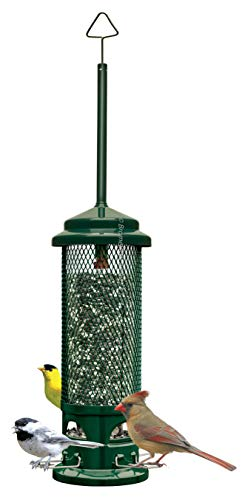 (Squirrel Buster Legacy Squirrel-proof Bird Feeder w/4 Metal Perches, 2.6-pound Seed Capacity)