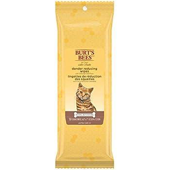 Amazon Com Burt S Bees Tearless Kitten Shampoo With