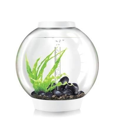 BiOrb 45732.0 Classic 60 LED White Aquariums