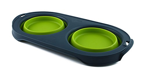 Dexas Popware for Pets Double Bowl Collapsible Travel Feeder, 5 Cup Capacity, Green