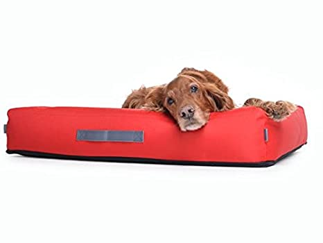 Perros Cojín cama para perros de nylon, Rojo, en deseos con ortopédica viscoelástica Espuma: Amazon.es: Productos para mascotas