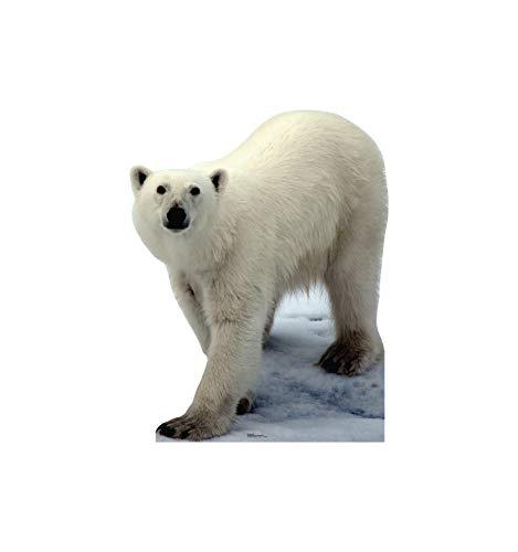 Advanced Graphics Polar Bear Life Size Cardboard Cutout Standup ()