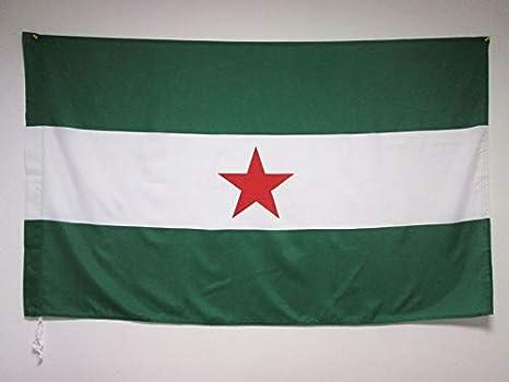 AZ FLAG Bandera de Andalucia ARBONAIDA 150x90cm para Palo - Bandera INDEPENDENTISTA ANDALUZA - NACIONALISMO Andaluz 90 x 150 cm: Amazon.es: Hogar