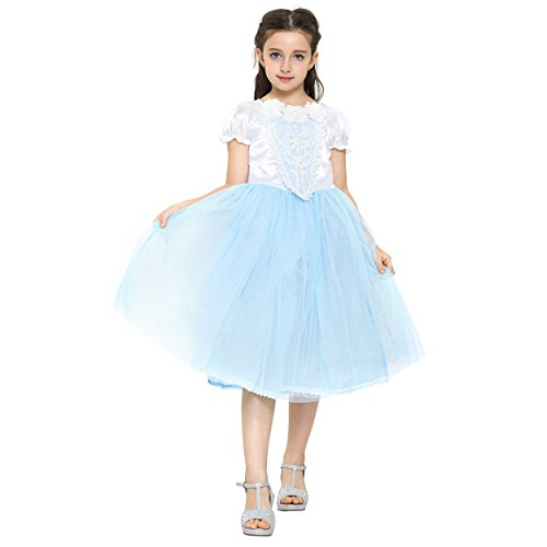 Girls Princess Dress Costume: Gown for Halloween and Dress Up: Ages 3-4 Blue