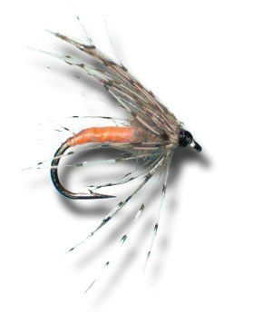 Partridge & Orange Wet Fly Fly Fishing Fly - Size 14 - 6 Pack (Partridge Fishing Fly)