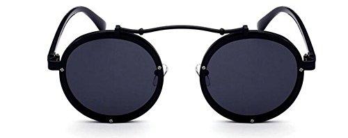 en de Polarisées Soleil Retro Pour A Noir Hommes Morceau Style Rond Inspirées Steampunk du Cercle Métallique et de Frêne Femmes Lunettes gwq1T8x