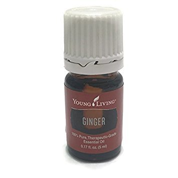 Ginger Essential Oil 5ml by Young Living Essential Oils by Young Living