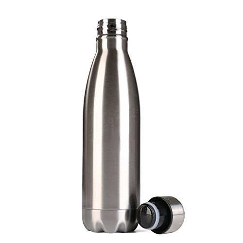 Beschoi 17oz Insulated Double Wall Vacuum Stainless Steel Water Bottles Keeps Drinks Hot and Cold (Silver)
