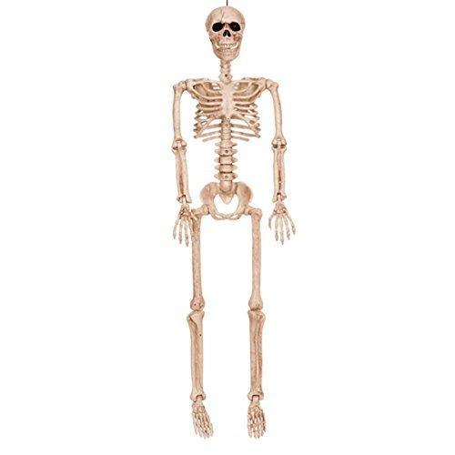 Crazy Bonez Posable Skeleton Decoration, 36''