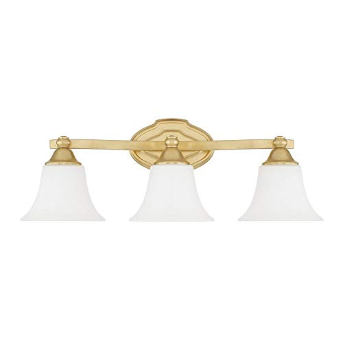 Capital Lighting 8523CG-114 Three Vanity