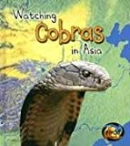 Watching Cobras in Asia, Richard Spilsbury and Louise A. Spilsbury, 1403472246