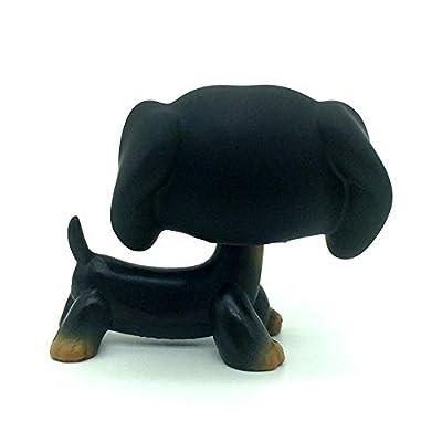 jjlin Rare Mini Pet Shop Black Dachshund Dog Chien Teckel Puppy Blue Eyes #325: Toys & Games