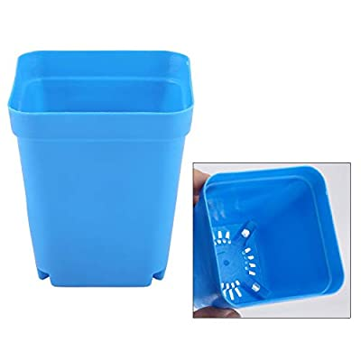 20 PCS Plastic Plant Flower Pots, Mini Modern Succulent Seed Tray Small Containers Scrub Square Pots Perfect for Gardener(Blue): Garden & Outdoor
