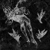 From Which of This Oak [Vinyl]