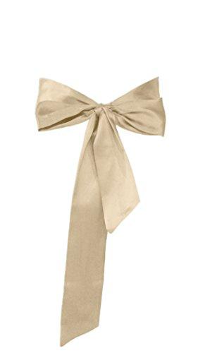 Champagne Belt (Dobelove Solid Color Satin Belt for Special Occasion Dress Bridal Sash)