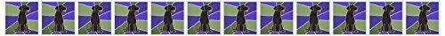 (3dRose Black Labrador Retriever Art Greeting Cards, Set of 12 (gc_195124_2))