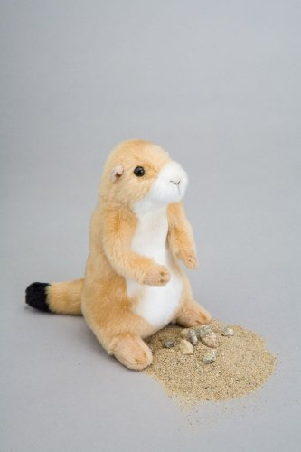 Douglas Stuffed Dogs Collection (Digger Prairie Dog Plush Toy 7