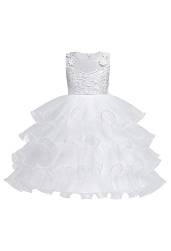 TYQQU Girl's Beautiful Puffy Dress Short Sleeveless Embroidery