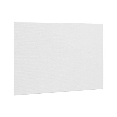 US Art Supply 24-Pack of 11 X 14 inch Professional Artist Quality Acid Free Canvas Panel Boards for Painting - 2-12-Packs (1 Full Case of 24 Single Canvas Board Panels) by US Art Supply (Image #1)