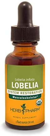 Herb Pharm Certified Organic Lobelia Liquid Extract for Musculoskeletal System Support - 1 Ounce
