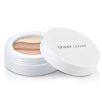 Sheer Cover Studio – Sun Kissed Bronzing Minerals – Contour and Highlight – Glowing Pressed Powder – with FREE Blush Brush – 4.5 Grams Guthy|Renker