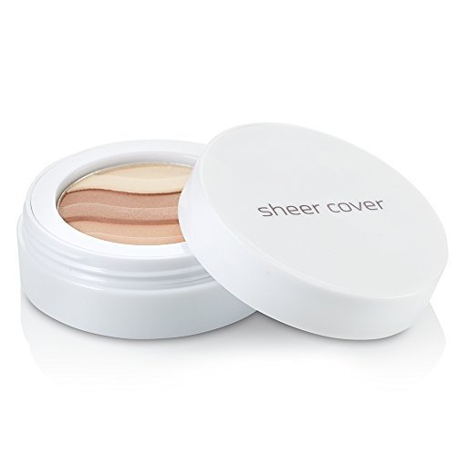 Sheer Cover Studio  Sun Kissed Bronzing Minerals  Contour and Highlight  Glowing Pressed Powder  with FREE Blush Brush  2.5 Grams