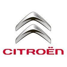 Citroen DS3/ Seitenschweller- Befestigungs-Clip-Set, Originalteil - 1610186180