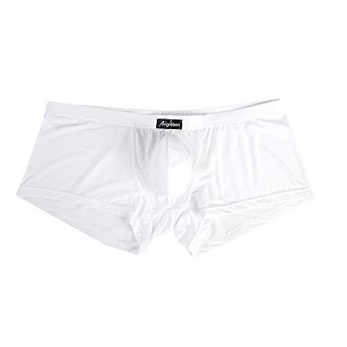 Kaniem Men's Underwear Boxer Briefs Quick Dry Boxers Shorts Cool Breathable Underpants (L, White)