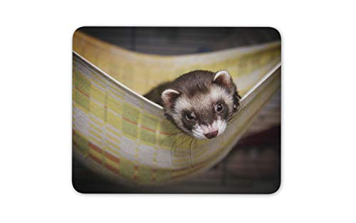 (Adorable Baby Ferret Mouse Mat Pad - Cute Wildlife Sleeping Computer Gift #16853)