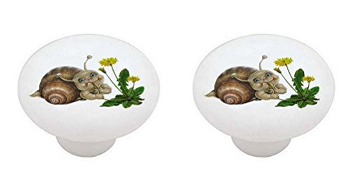 (SET OF 2 KNOBS - Dandelion Salad Snail - Bugs Insects - DECORATIVE Glossy CERAMIC Cabinet PULLS Dresser Drawer KNOBS)
