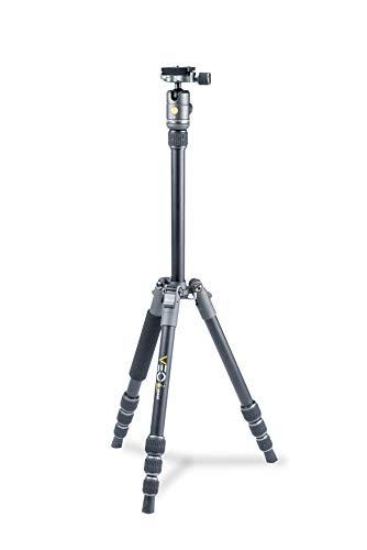 Vanguard VEO2GO204AB Aluminum Travel Tripod with Ball Head for Sony, Nikon, Canon, Fujifilm Mirrorless, Compact System Camera (CSC) (Best Mirrorless Camera For Portraits 2019)